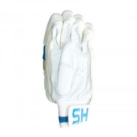 Gloves HS Zaib